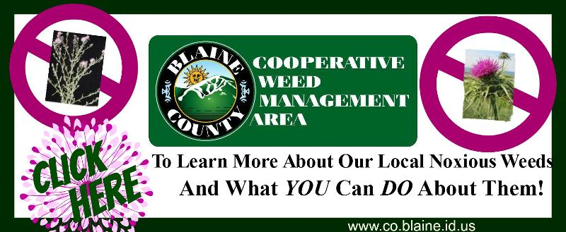 Blaine County Weed Management | sun valley online