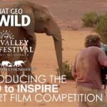 svff WILD TO INSPIRE SHORT FILM COMPETITION 2